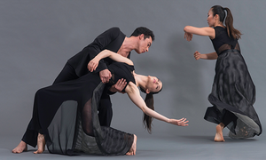 Dana Tai Soon Burgess Dance Company – Board of Directors